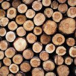 県産木材のサムネイル画像